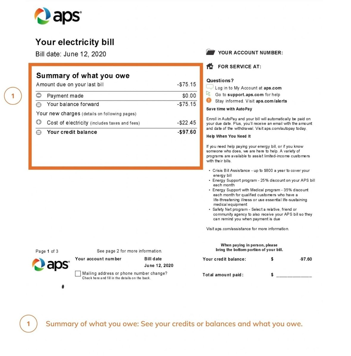 APS Electric Bill - Summary of what you owe